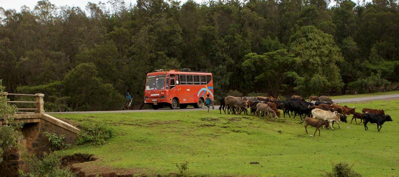 Bus in Ethiopia