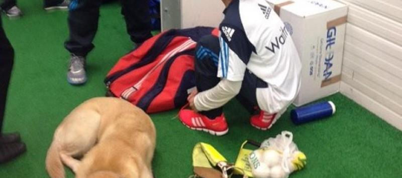 Mahomed with guide dog, preparing for a game of cricket