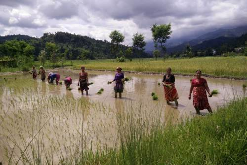 Women in Nepal where volunteers work