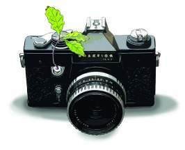 Illustration: camera with some green leaves
