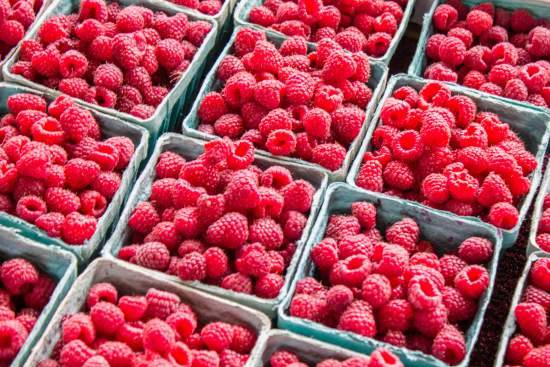 Punnets of raspberries lined up on a farmers market stand